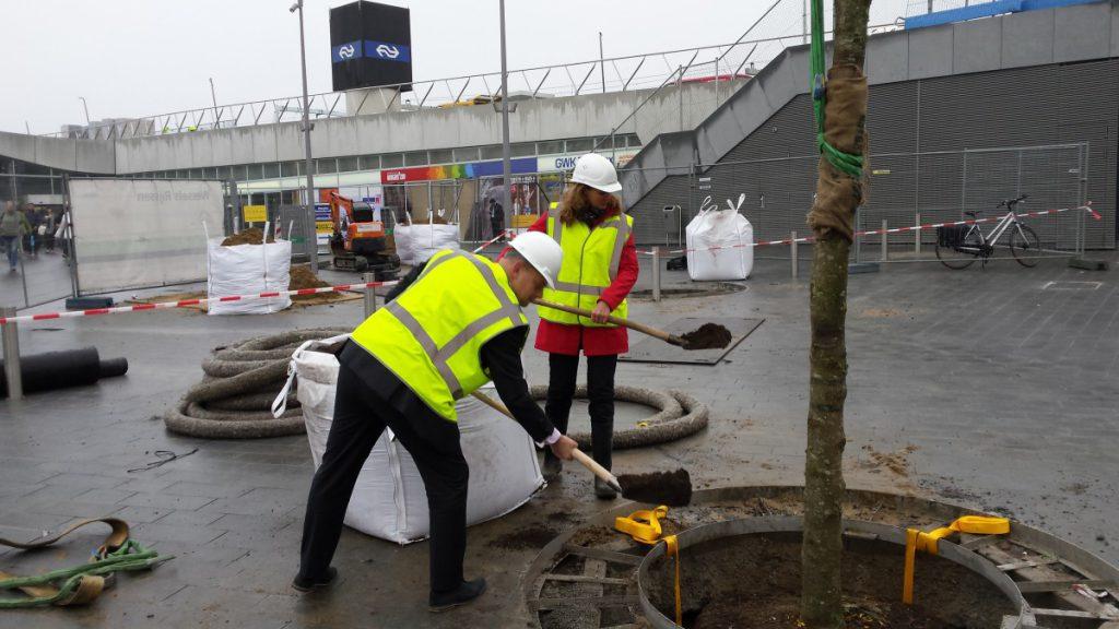Een innovatieve groeiplaatsinrichting. De ondergrondse voorziening bestaat uit een raamwerk die het gewicht van de verharding opvangt gevuld met grond.