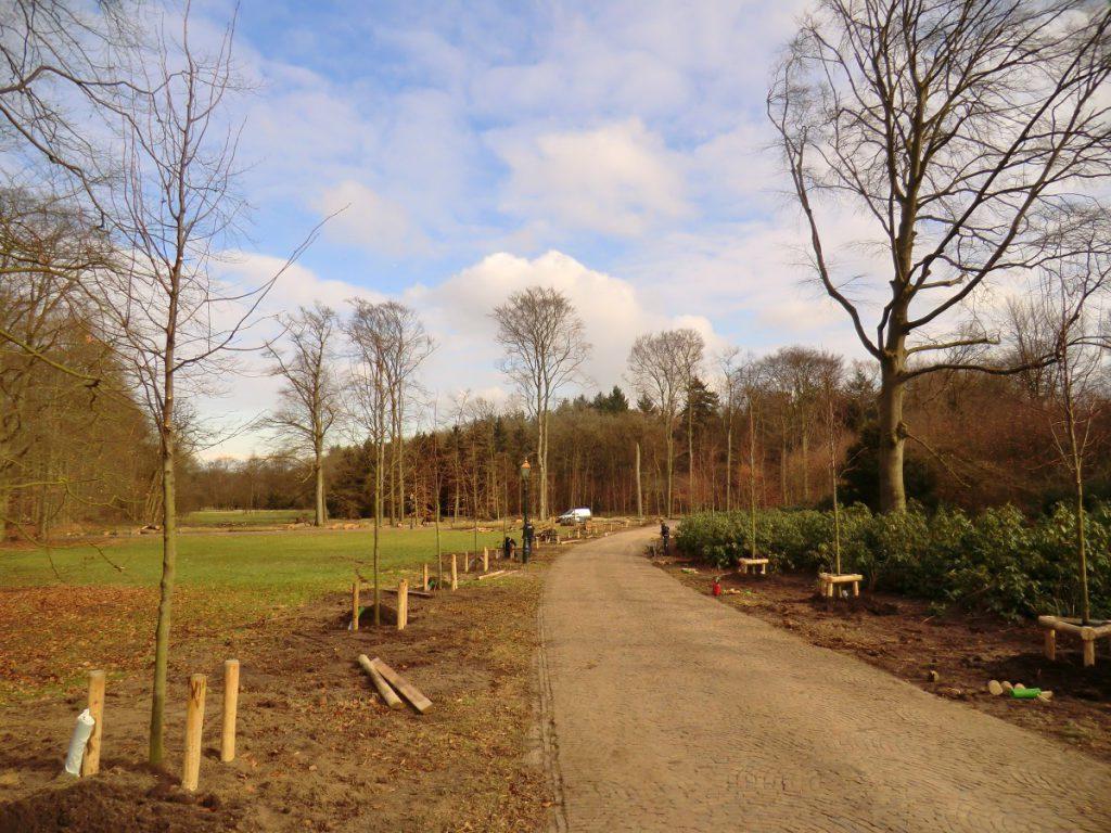De oude lindelaan op Landgoed De Paltz is tijdens een storm zwaar beschadigd. Na het vellen van de bomen zijn nieuwe lindes aangeplant, de laanstructuur.