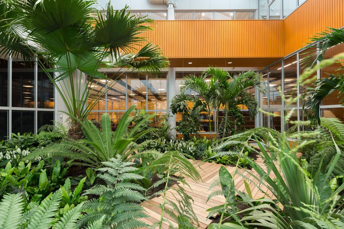 Nominatie copijn interieurbeplanting 2018 campus 013 tilburg for Interieur beplanting