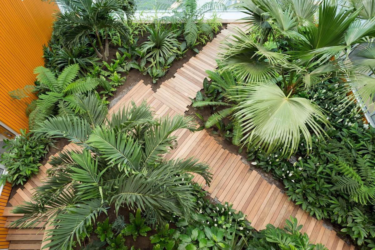 Campus 013 copijn interieurbeplanting binnentuin tropenkas for Interieur beplanting