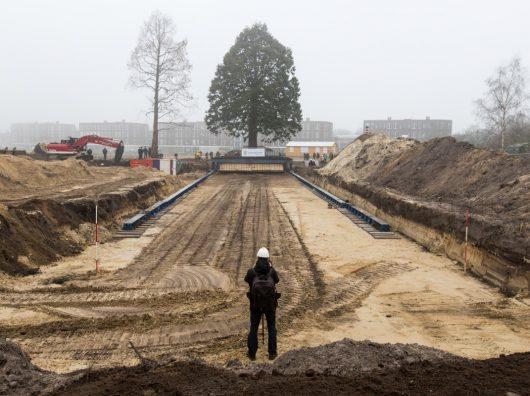 Copijn-Vijzelmethode_Driebergen-verplanting
