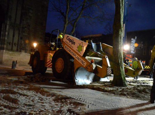 Copijn Boomspecialisten heeft de bomen op het Domplein met de Caterpillar uit de grond gestoken en op een dieplader door de binnenstad Utrecht vervoerd.