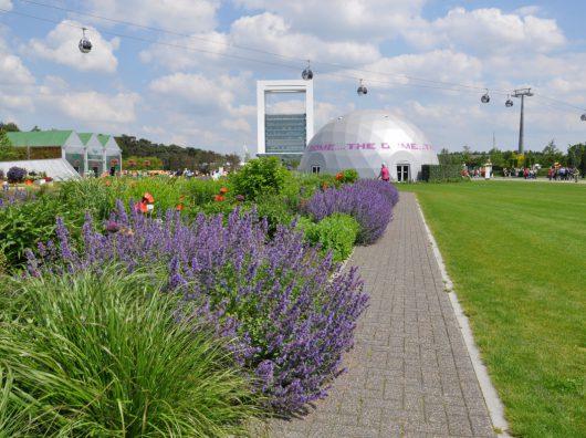 Copijn maakt het ontwerp, technische uitwerking en de beplantingsplannen. Een ontwerp met hoogwaardige beplanting voor vijf themavelden van Floriade 2012.