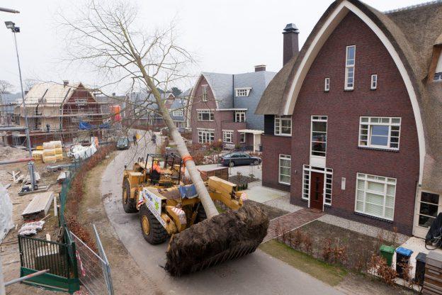 De verplanting in Park Brederode in Bloemendaal werd uitgevoerd met de Caterpillar verplantmachine. Er zijn ruim 2500 bomen beoordeeld op verplantbaarheid.