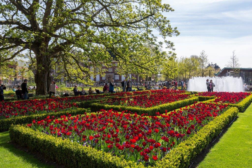 Rijksmuseum groen erfgoed tulpenplan copijn