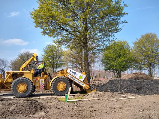 Boomverplanting Floriade 2022