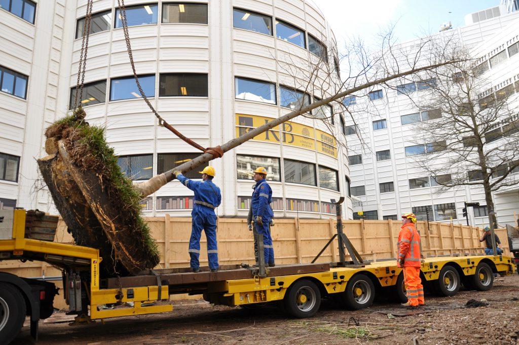 Copijn Boomverplanting Ministerie van Buitenlandse Zaken Dieplader