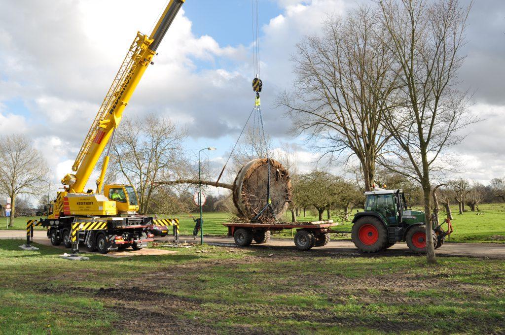 Copijn Boomverplanting Ministerie van Buitenlandse Zaken Telescoopkraan Tractor