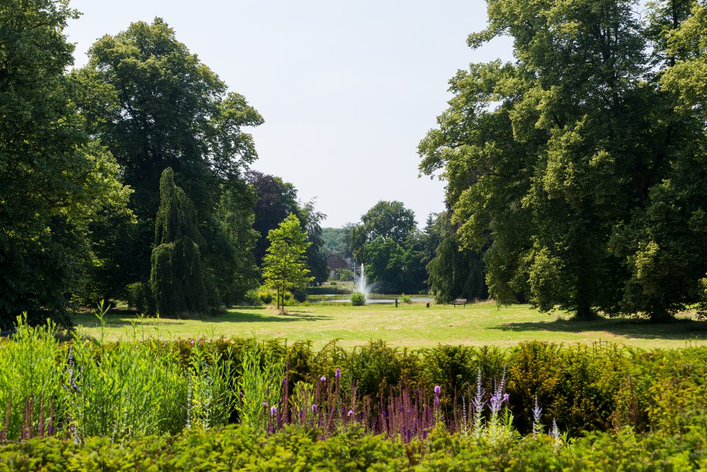 Copijn Groenaanleg en Beheer Hydepark Hoveniers