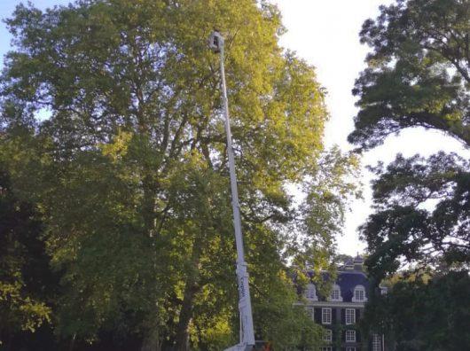 Buitenplaats Doornburgh snoeiwerkzaamheden