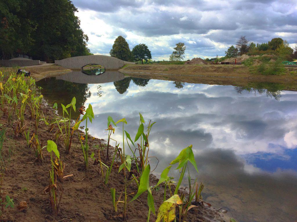 Oeverbeplanting Triodos Landschap