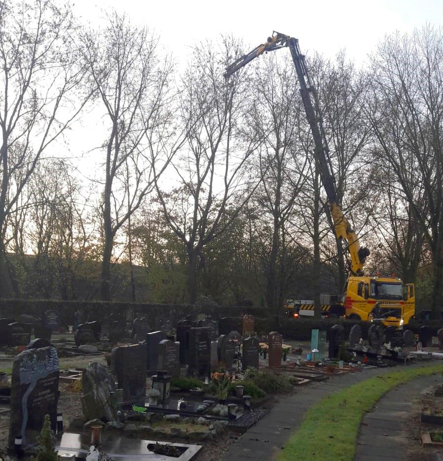 Begraafplaats Noorderveld Copijn Bomen Kappen