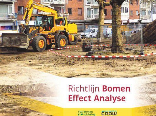 Richtlijn Bomen Effect Analyse