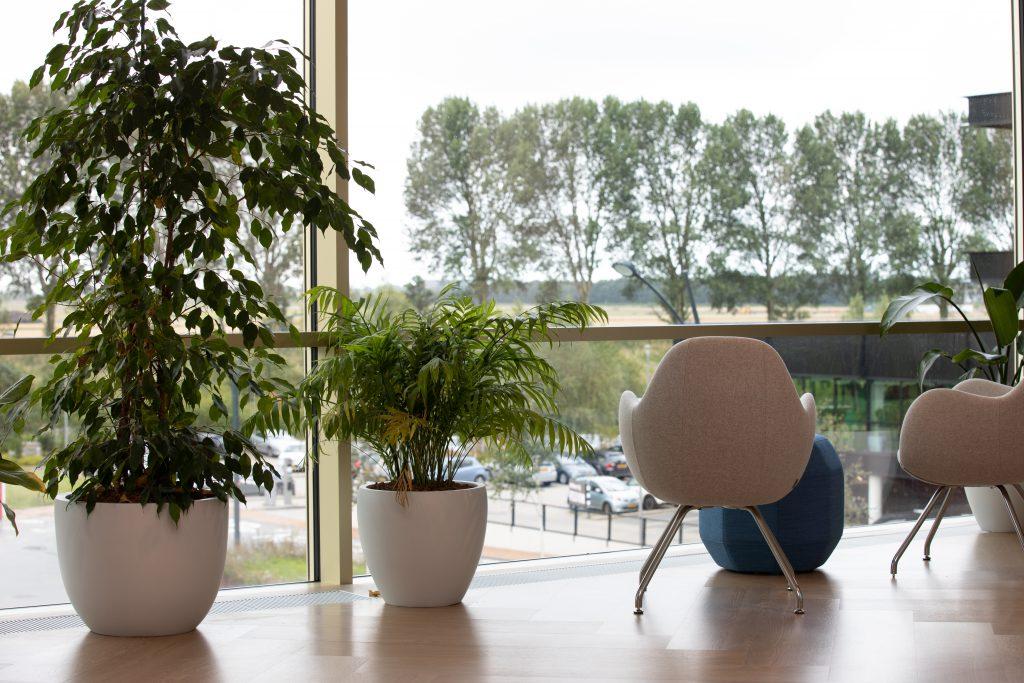 Interieurbeplanting Danone Copijn