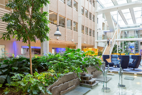 FGH Bank Interieurbeplanting Copijn