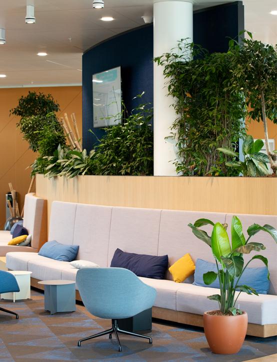 Interieurbeplanting in kantoor