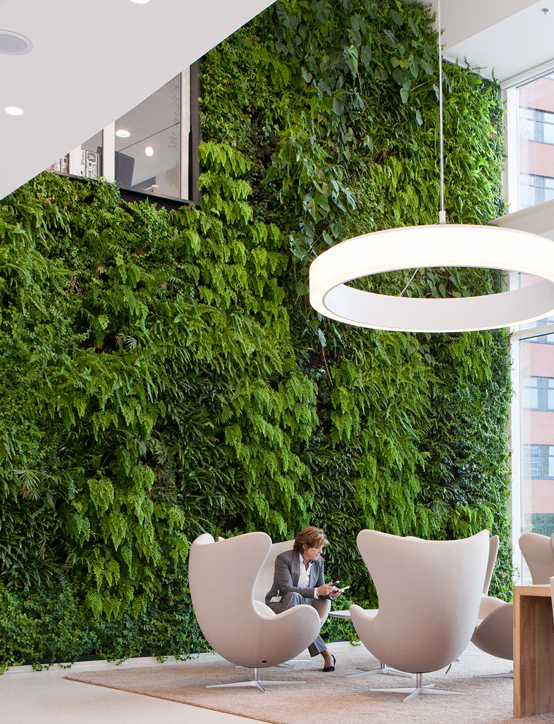 Groene wand in kantoor wachtruimte