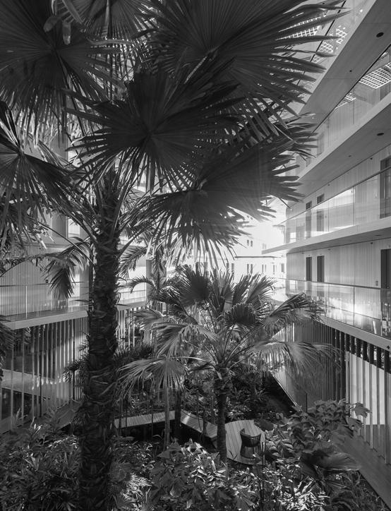 Interieurbeplanting Hotel Jakarta