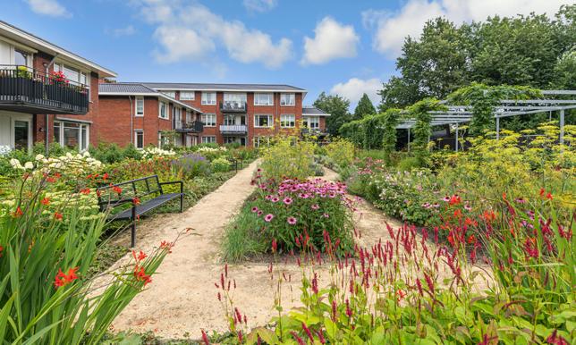 ontwerp collectieve tuin Rijnweide Vleuten